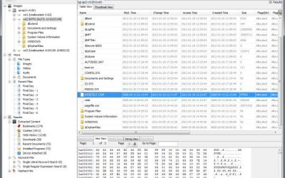 Autopsy Forensic browser